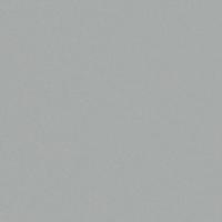 COLOUR: SILVER METALLIC ACRYLUX 1276Z
